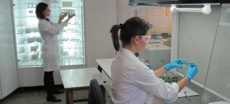 Συνεργασία Ιδρύματος Τεχνολογίας και Έρευνας Κρήτης με Γεωπονικό Πανεπιστήμιο Αθηνών