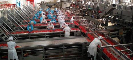Εξήντα από τις 175 εταιρείες, που ξεχωρίζει η Grant Thornton, ανήκουν στον ευρύτερο αγροδιατροφικό τομέα