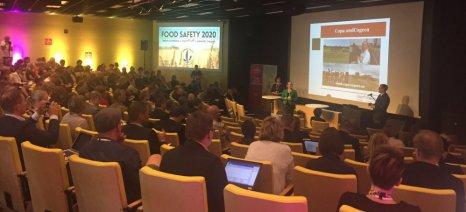Ολοκληρωμένη διαχείριση των δασών στην πράξη, με στόχο τη διατροφική επάρκεια