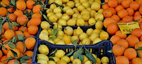 Σχέδιο τροπολογίας αναγνωρίζει τις αγορές παραγωγών