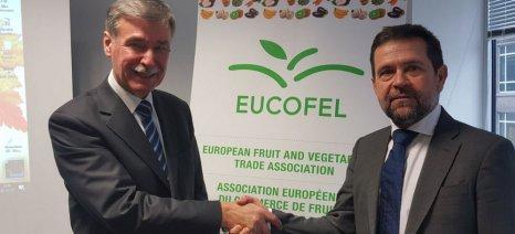 Στη θέση του αντιπροέδρου της Ευρωπαϊκής Ένωσης Εμπορίου Φρούτων και Λαχανικών εξελέγη ο Γ. Φραγκίστας
