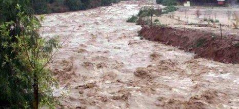 Τεχνητή πλημμύρα στον Έβρο αποφάσισε ο Πέτροβιτς