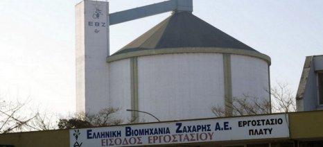 Τα εργοστάσια σε Πλατύ και Ορεστιάδα θα λειτουργήσει φέτος η ΕΒΖ