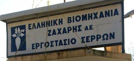 Τις ανάγκες του αγροτικού τομέα του νομού Σερρών απαρίθμησε ο αντιπεριφερειάρχης Γιάννης Μωυσιάδης
