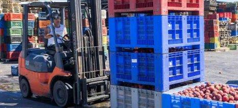 Νέο ιστορικό ρεκόρ για τις εξαγωγές με τα αγροτικά προϊόντα σε άνοδο