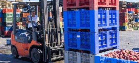 ΠΣΕ: Θετικό πρόσημο για τις ελληνικές εξαγωγές κατά το πρώτο εξάμηνο