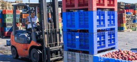 Εξαγωγική κάμψη Αυγούστου με λάδια και τρόφιμα σε ύφεση - καπνός και ποτά σε άνοδο