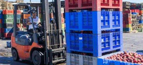 Συνεχίζονται οι υψηλές επιδόσεις των εξαγωγών ευρωπαϊκών αγροδιατροφικών προϊόντων