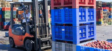 Σε επίπεδα ρεκόρ οι εξαγωγές αγροδιατροφικών προϊόντων της Ευρωπαϊκής Ένωσης