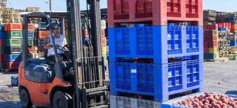 Τρόφιμα και ζώντα ζώα σους συντελεστές της οριακής ανόδου των εξαγωγών στο 11μηνο του 2019