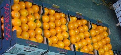 Σεμινάριο στο Επιμελητήριο Καρδίτσας για τα εξαγώγιμα προϊόντα