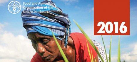 FAO: Αναγκαία η αλλαγή στις καλλιέργειες και την εκτροφή ζώων για να αντιμετωπιστεί το φαινόμενο του θερμοκηπίου