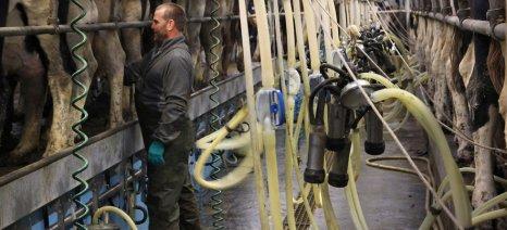 Έκκληση για μεγαλύτερη προστασία των αγελαδοτρόφων από τη βρετανική Βουλή