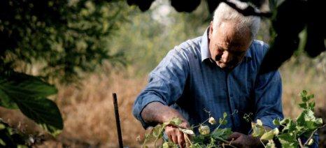 Φόρο-σοκ 33% στους αγρότες ζητούν οι «θεσμοί» για να εισπραχθούν 500 εκατ. ευρώ