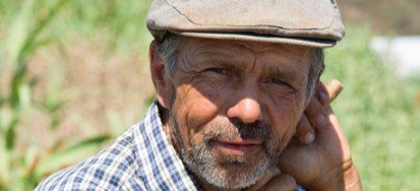 Από το 2009 έως το 2014 το γεωργικό εισόδημα στην Ελλάδα μειώθηκε κατά 12,8%
