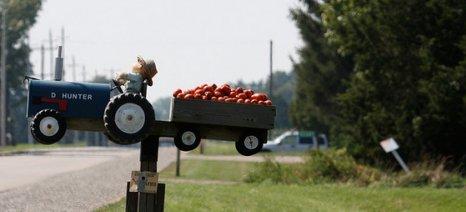 Ισχύει το ακατάσχετο των αγροτικών προϊόντων και της αξίας τους - Επιστροφή χρημάτων για 40 τοματοπαραγωγούς