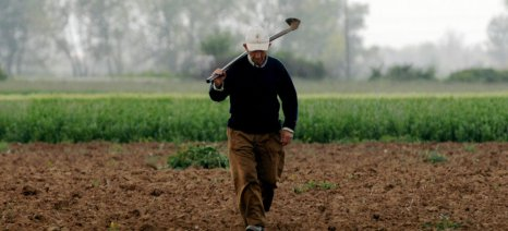 Επιχειρήσεις γεωργικών εφοδίων Ροδόπης: Σε οριακό επίπεδο ο αγροτικός τομέας - Ανάγκη για πολιτική παρέμβαση