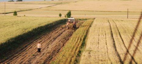 Μεγάλη μείωση της αγροτικής παραγωγής στην Πολωνία – ζημιές από την ξηρασία