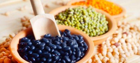Τροφές-φάρμακα για ανακούφιση από καθημερινές ενοχλήσεις
