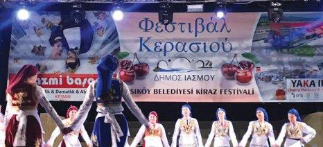 Ένα φεστιβάλ για το κεράσι χωρίς... κεράσια