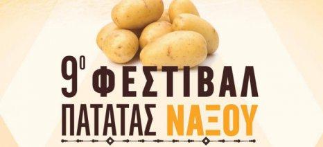 Ρεκόρ Γκίνες με τη μεγαλύτερη μερίδα τηγανητές πατάτες έχει βάλει στόχο αύριο το Φεστιβάλ Πατάτας Νάξου