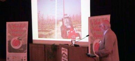 Επιπλέον 12.000 τόνοι ροδάκινων και νεκταρινιών στο πρόγραμμα δωρεάν διανομής