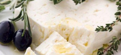 Σύλλογος Αγελαδοτρόφων Ηλείας: «Χάνεται η ταυτότητα των ελληνικών προϊόντων»