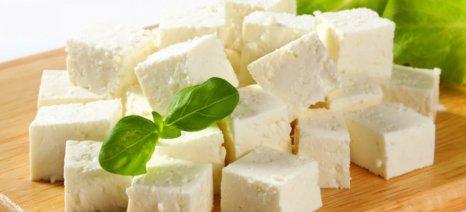 Σε ανοδική τροχιά κινείται η εγχώρια κατανάλωση τυροκομικών προϊόντων