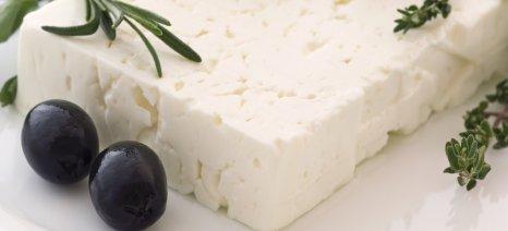 Σε προστασία φέτα και άλλα 20 επώνυμα ελληνικά αγροτικά προϊόντα από την συμφωνία Ε.Ε. - MERCOSUR