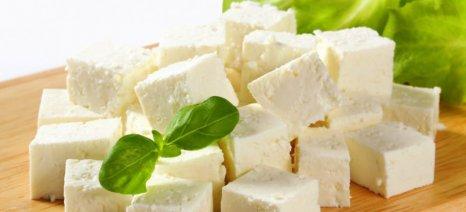 Κόντρα Κασαπίδη-Τελιγιορίδου για τις εισαγωγές γάλακτος και την φέτα