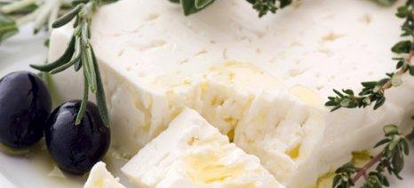 Η Εθνική Τράπεζα χορηγός του «Best Greek Cheese Award» για την στήριξη των παραγωγών τυροκομικών προϊόντων