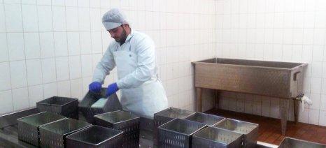 Ο ΣΕΚ προτείνει την κατοχύρωση της φέτας στη ρωσική αγορά