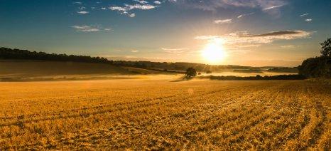 Η τελική διάταξη που απαλλάσσει τους αγρότες από τη φορολόγηση για τη χρήση της γης τους