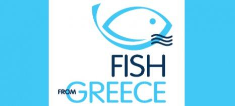 """Η εξωστρέφεια προτεραιότητα για την Ελληνική Οργάνωση Παραγωγών Υδατοκαλλιέργειας - νέο πρόγραμμα προώθησης """"Fish from Greece"""""""