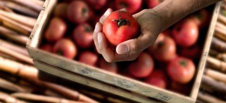 Σταθεροποίηση των τιμών των αγροτικών προϊόντων την επόμενη δεκαετία προβλέπει έκθεση του ΟΟΣΑ