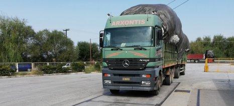 Ρεκόρ απόδοσης για το ελληνικό βαμβάκι στα 356 κιλά/στρέμμα το 2019