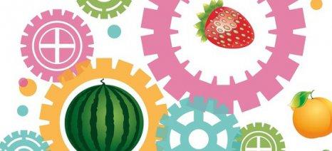 «Φόρουμ Αγροδιατροφής-Βιομηχανίας-Τουρισμού» δημιουργείται υπό την εποπτεία τριών γενικών γραμματέων