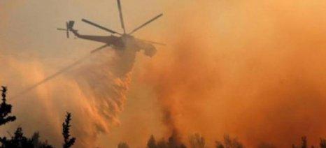 Υπό έλεγχο πυρκαγιά στην Κερατέα