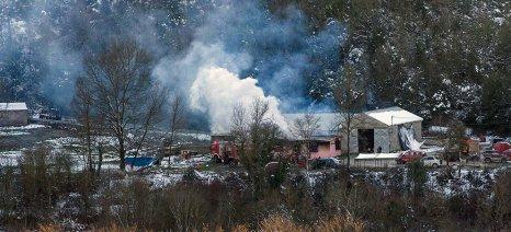 Φωτιά στο Αργυροπούλι κατέστρεψε ολοσχερώς ποιμνιοστάσιο και αμπελώνα