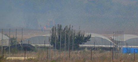 Περιορίστηκε η πυρκαγιά στην Πρέβεζα που έκαψε θερμοκήπια