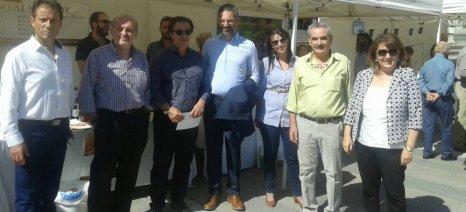 Με τη συμμετοχή της Τελιγιορίδου πραγματοποιήθηκε η 2η Γιορτή Μελιού στην Κοζάνη
