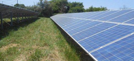 «Πέρασε» η τροπολογία για την αύξηση του πλεονάσματος ηλεκτρικής ενέργειας από αγροτικά φωτοβολταϊκά