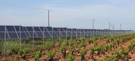 Ανοίγει ξανά ο ΛΑΓΗΕ το σύστημα για τις δηλώσεις επαγγελματία αγρότη