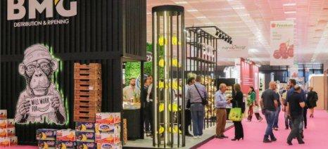 Πάνω από 22% η αύξηση των εμπορικών επισκεπτών στην 4η Freskon