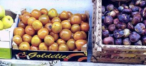 Αλλάζουν οι προϋποθέσεις για τις εξαγωγές φρούτων στην Ινδονησία από τις 16 Φεβρουαρίου