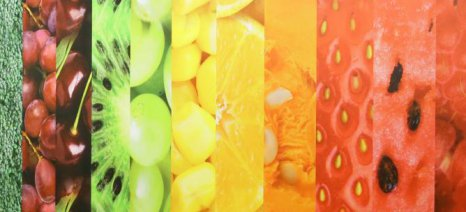 Incofruit: «Να επεκταθούν τα έκτακτα μέτρα στα καλοκαιρινά φρούτα», λόγω του ρωσικού εμπάργκο