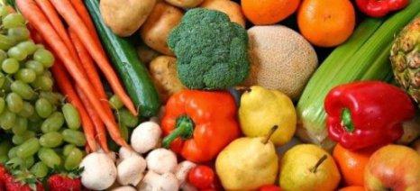 Πρόγραμμα σίτισης και υγιεινής διατροφής στα σχολεία από την Περιφέρεια Στερεάς Ελλάδας