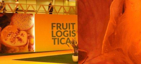 Για τρίτη συνεχόμενη χρονιά συμμετείχε η Περιφέρεια Κεντρικής Μακεδονίας στη Fruit Logistica