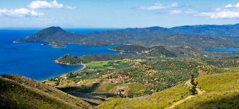 Χορτολιβαδικές αγροτικές εκτάσεις οι φρυγανικές για τους δασικούς χάρτες