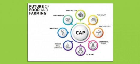 Η Κομισιόν απαντά σε 19 ερωτήσεις για το μέλλον της ΚΑΠ μετά το 2020